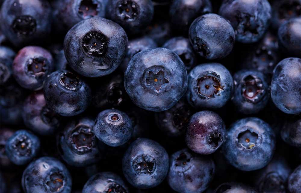 Blåbær kan bekæmpe herpesudbrud
